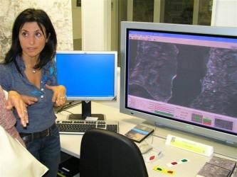 Rim 2007._89
